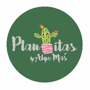 PLANTITAS Y ALGO MAS