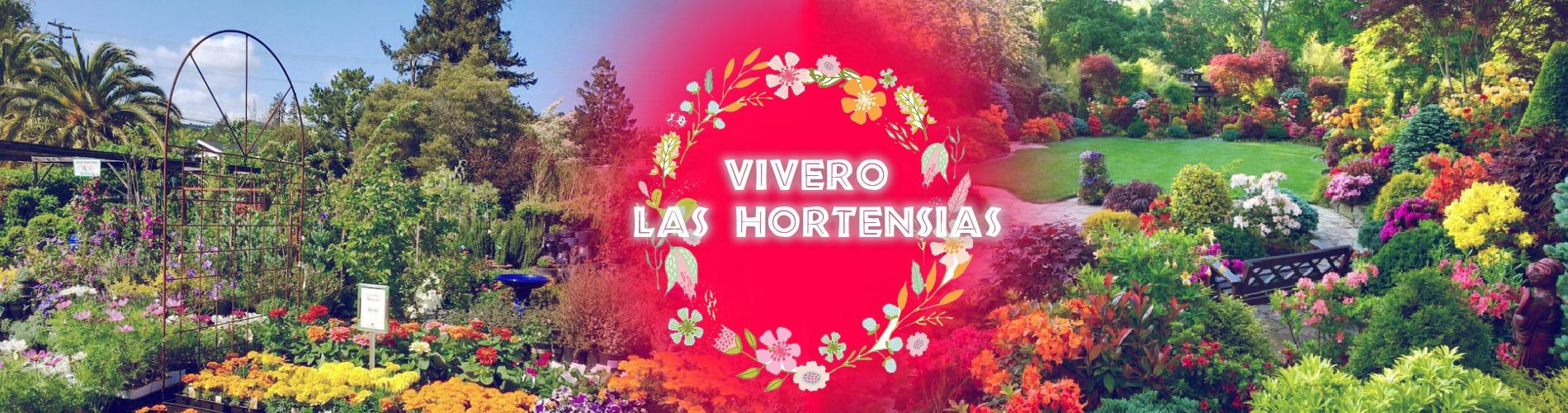 Las Hortencias